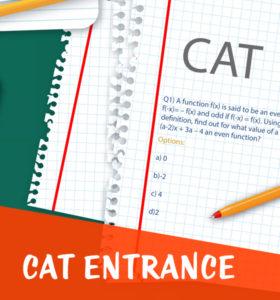 cat-entrance